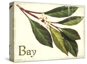 Bayleaf antique by The Saturday Evening Post