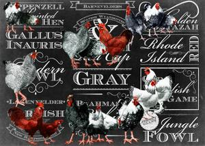 Chicken Collage 2 by The Saturday Evening Post