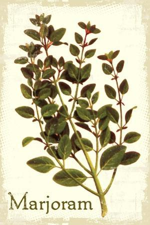 Marjoram antique by The Saturday Evening Post