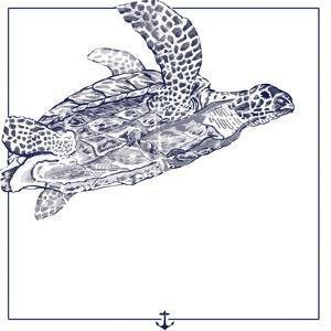 Sea Turtle by The Saturday Evening Post