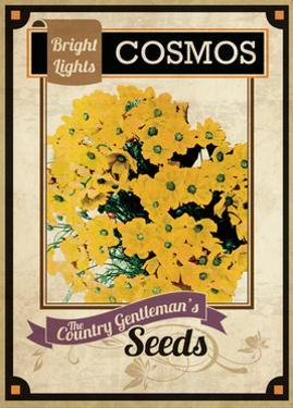 Seed Packet - Cosmos by The Saturday Evening Post