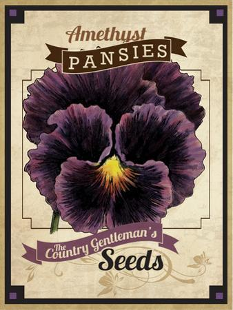 Seed Packet - Pansy by The Saturday Evening Post