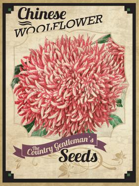 Seed Packet - Woolflower by The Saturday Evening Post
