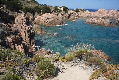 https://imgc.allpostersimages.com/img/posters/the-sea-at-costa-paradiso-sardinia-italy-mediterranean_u-L-PWFEEV0.jpg?p=0