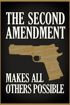 https://imgc.allpostersimages.com/img/posters/the-second-amendment-makes-all-others-possible_u-L-PYAXT40.jpg?artPerspective=n