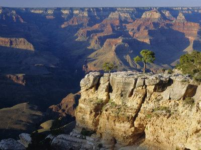 https://imgc.allpostersimages.com/img/posters/the-south-rim-of-the-grand-canyon-arizona-usa_u-L-P2JGHF0.jpg?p=0