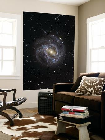 https://imgc.allpostersimages.com/img/posters/the-southern-pinwheel-galaxy_u-L-PFHCHA0.jpg?artPerspective=n