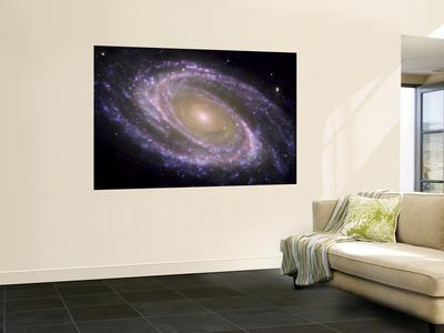 https://imgc.allpostersimages.com/img/posters/the-spiral-galaxy-known-as-messier-81_u-L-PFHCVI0.jpg?artPerspective=n