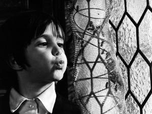 The Spirit Of The Beehive, (aka El Espiritu De La Colmena), Ana Torrent, 1973