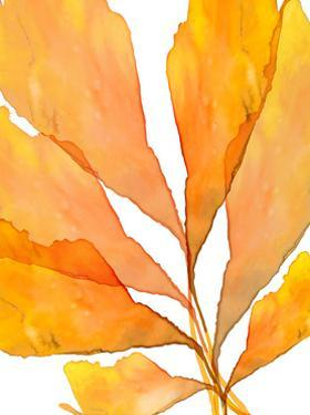 Autumn Leaves 3 by THE Studio