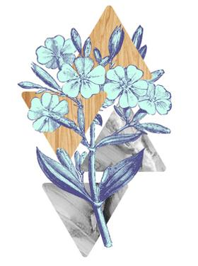 Botanical Studies 3 by THE Studio