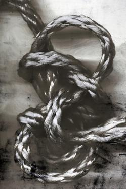 Knotted Rope Study 3 by THE Studio