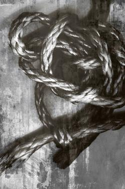 Knotted Rope Study 4 by THE Studio