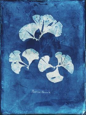 Natural Forms Blue 4 by THE Studio