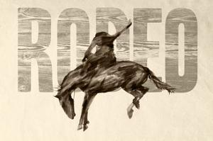 Rodeo by THE Studio