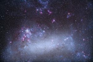 The Tarantula Nebula in the Large Magellanic Cloud