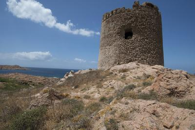 https://imgc.allpostersimages.com/img/posters/the-torre-aragonese-a-spanish-tower-dating-from-the-year-ad500-isola-rossa_u-L-PWFEEJ0.jpg?artPerspective=n