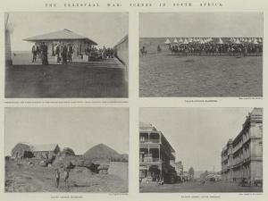The Transvaal War, Scenes in South Africa