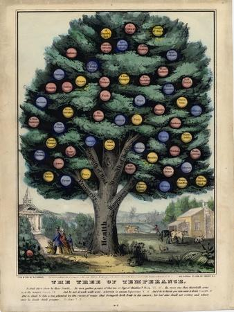 https://imgc.allpostersimages.com/img/posters/the-tree-of-temperance-published-by-n-currier-new-york-1849_u-L-PLL4KD0.jpg?p=0