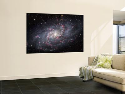 https://imgc.allpostersimages.com/img/posters/the-triangulum-galaxy_u-L-PFHCI00.jpg?artPerspective=n