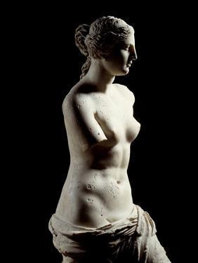 The Venus De Milo - Detail of a Marble Sculpture of Aphrodite