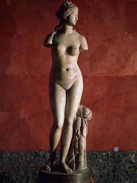 The Venus Tauride or Venus of Tauris, 2nd Century Ad