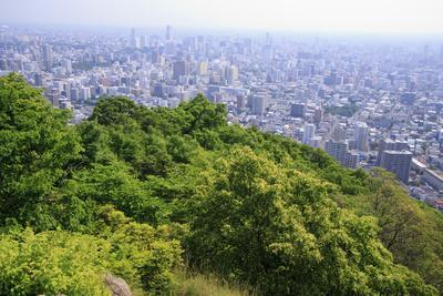 https://imgc.allpostersimages.com/img/posters/the-view-out-over-sapporo-city-from-the-summit-of-mt-maruyama-hokkaido-japan_u-L-Q12TB8Y0.jpg?artPerspective=n