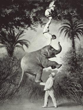 Balancing An Elephant! by The Vintage Collection
