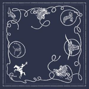 Bandana Pattern - Lasso by The Vintage Collection