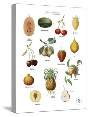 Discovery Charts - Fruit by The Vintage Collection