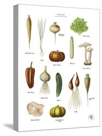 Discovery Charts - Harvest