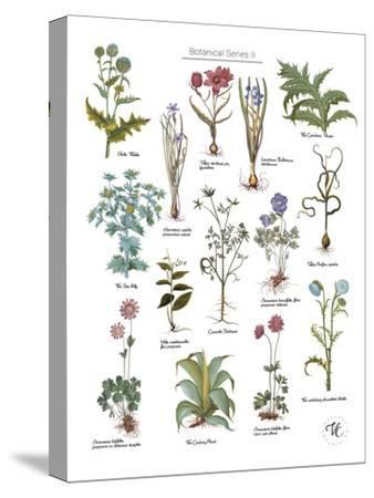 Discovery Charts - Plant