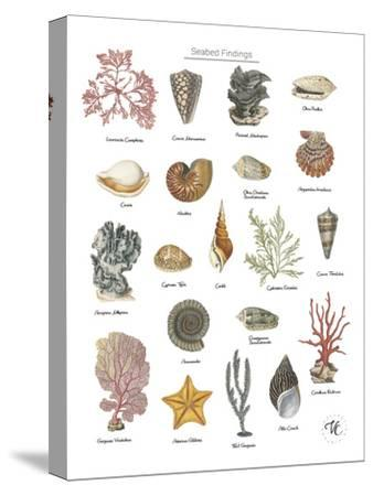 Discovery Charts - Seabed