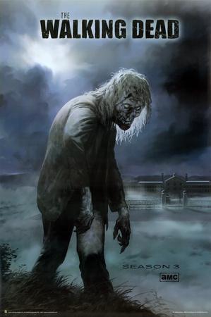 https://imgc.allpostersimages.com/img/posters/the-walking-dead-season-3_u-L-F5E63H0.jpg?p=0