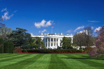 https://imgc.allpostersimages.com/img/posters/the-white-house-and-south-lawn-washington-dc-usa_u-L-Q1D0NKN0.jpg?p=0
