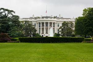 The White House Washington DC Plastic Sign