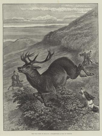 https://imgc.allpostersimages.com/img/posters/the-wild-west-of-england-unharbouring-a-stag-on-exmoor_u-L-PUSOK90.jpg?p=0