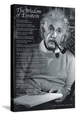 The Wisdom of Einstein