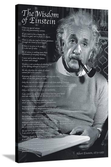 The Wisdom of Einstein--Stretched Canvas Print