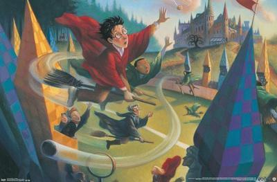 https://imgc.allpostersimages.com/img/posters/the-wizarding-world-harry-potter-illustrated-quidditch_u-L-F9KMTD0.jpg?artPerspective=n