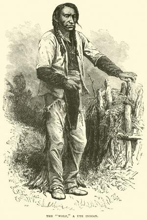 https://imgc.allpostersimages.com/img/posters/the-wolf-a-ute-indian_u-L-PP9TYD0.jpg?p=0