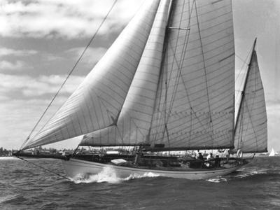 The Yacht 'Arlette'