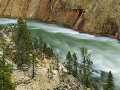 https://imgc.allpostersimages.com/img/posters/the-yellowstone-river-yellowstone-national-park-wyoming-usa_u-L-PN72WF0.jpg?p=0