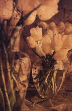 Antique Tulips I by Thea Schrack
