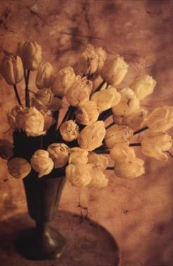 Antique Tulips II by Thea Schrack