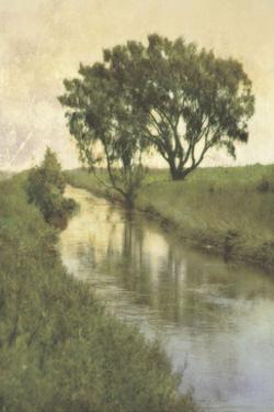 Meandering I by Thea Schrack