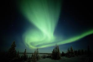 Canada, Manitoba, Wapusk National Park, Aurora Borealis by Theo Allofs