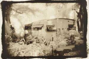 Caravan deep in the woods, Queensland, Australia by Theo Westenberger