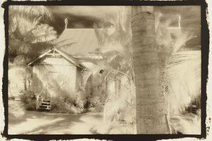 Church behind the palms, Australia by Theo Westenberger