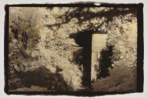 Door in the Woods by Theo Westenberger